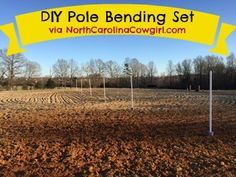 Don't pay $300 for a new set. In this post, I've provided step by step instructions for how to make your own pole bending set for just $40.
