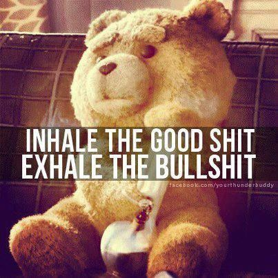 Ted Quotes!