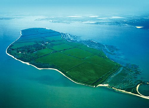 Holiday Homes In Osea Island