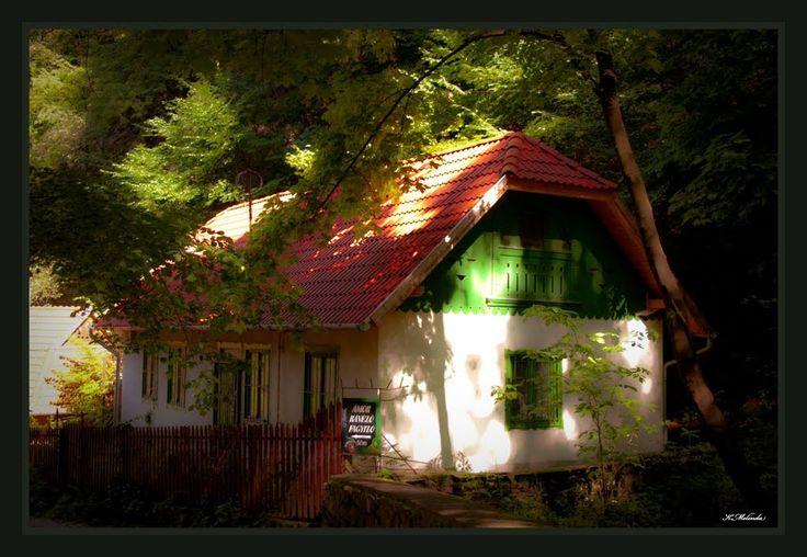 Erdőbéli meseház