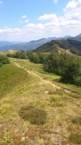 A path on the Tuscany Appenines near San Pellegrino in Alpe