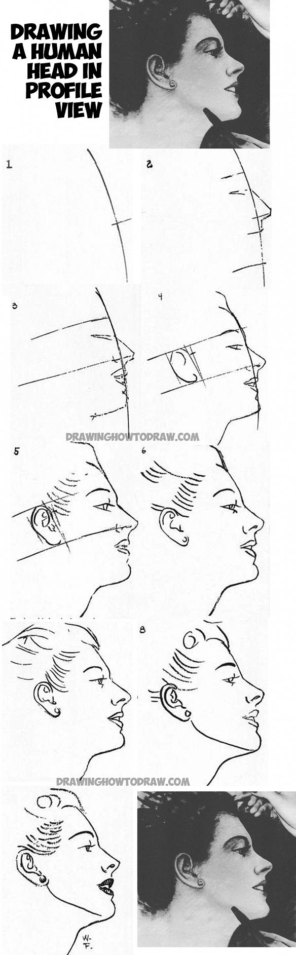 Learn How To Draw The Human Head  Female Face  In Profile  From The