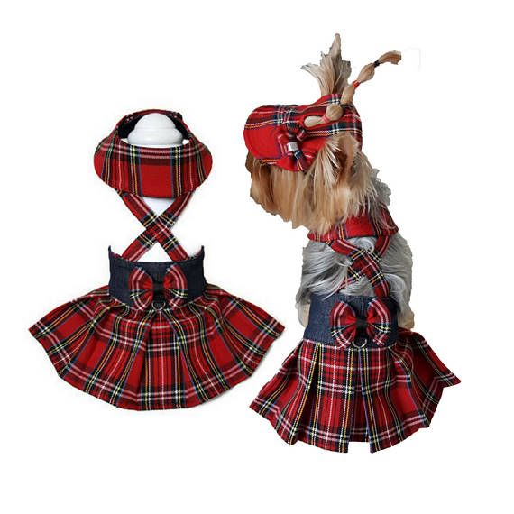 Red tartan dog clothes Tartan dog pet skirt Dog clothes small #dogclothes #petclothes #smalldog #tartanshirt #doggies #yorkielove #smalldogfashion