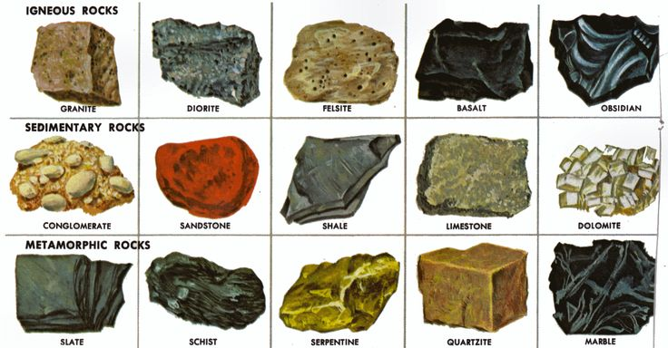 Some types of rocks | elyasambition1