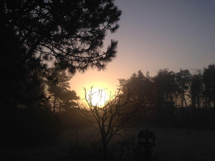 Skøn diset morgen på Knud Strand. Frost på jorden, men ingen tvivl om at solen vil bryde igennem i dag -  23. marts 2017.