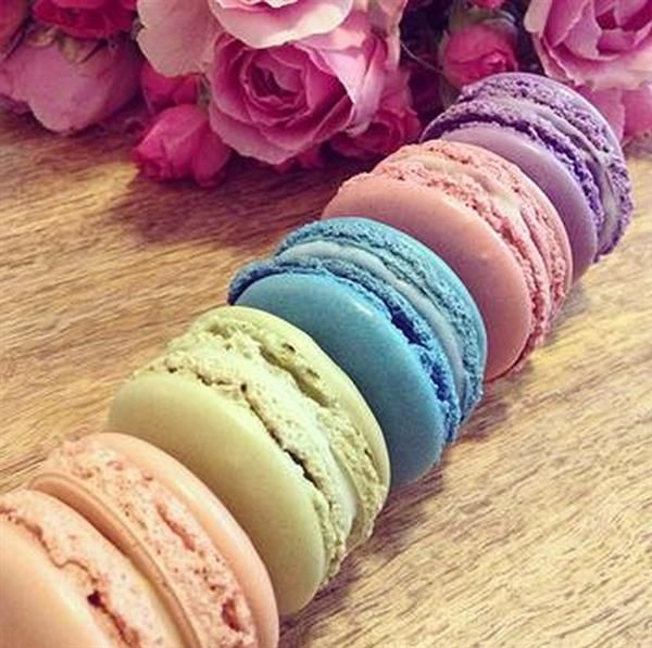 Believe it or not, these are macarons for your dog!! Delicious!