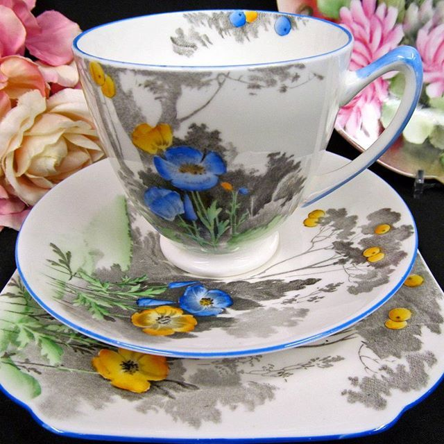 Shelley teacup painted trio