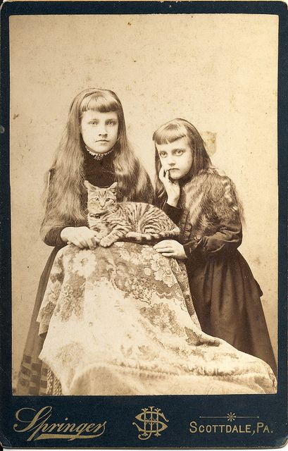 Two lovely long haired young lasses pose with their darling kitty in this elegant Victorian portrait.