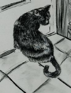 Even if you can't see the leg, neck, paws and so forth because the fur is too dark, draw lines where they go. | www.drawing-made-easy.com | #drawing