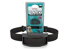 Best Shock Collars for Small Dogs