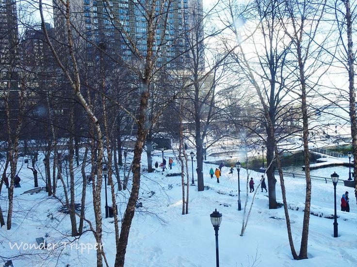 New York City Snowstorm Jonas. The Aftermath   Wonder Tripper