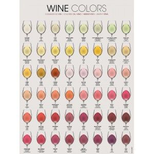 """WINE COLORS"" Poster  Size: 68 x 91 cm (26.5 x 35.5 inches)  Elegantly designed to improve your wine knowledge An attractive addition to any kitchen, wine cellar, or restaurant An ideal gift for all wine lovers"
