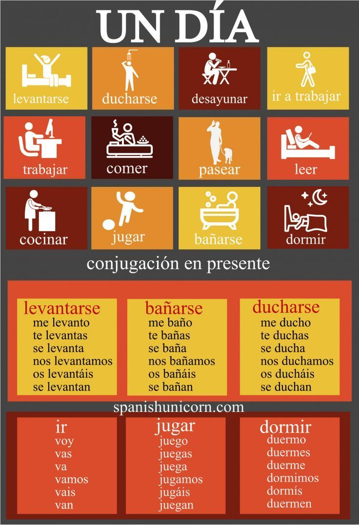Vocabulary and conjugation of the daily routine in Spanish