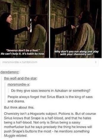Sirius & Snape