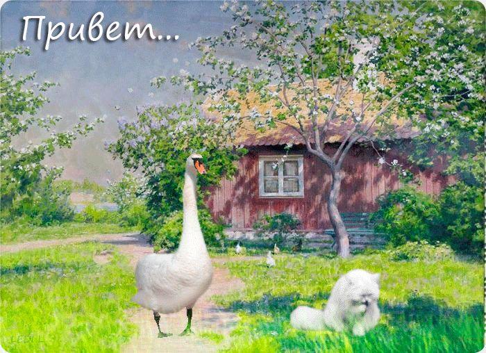 Красивые картинки и гифки с добрым утром с деревней, ссср
