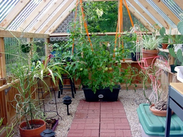 Greenhouse Kits Photo Gallery The Patio Blocks Make A Great Walkway And The  Gravel Absorbs Any
