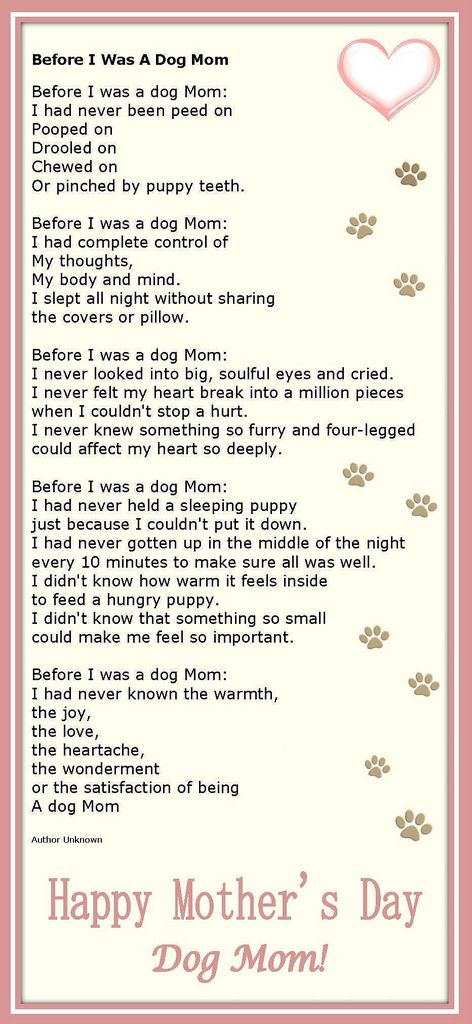 for dog moms on mothers day Check more at http://hrenoten.com