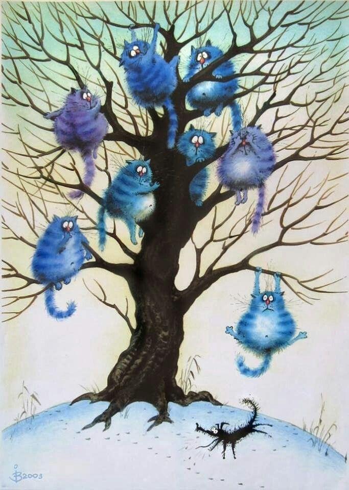 Mavi Kediler