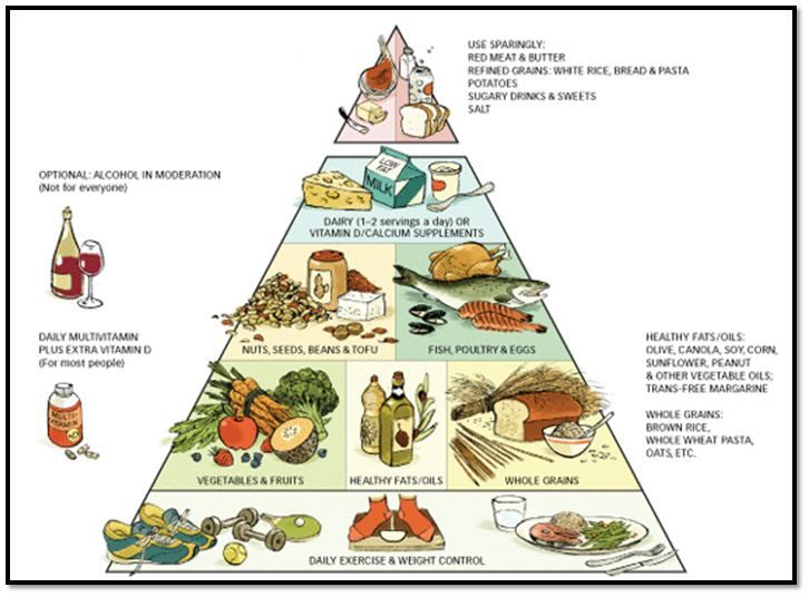 harvard-healthy-eating-pyramid-big1.jpg (726×536)