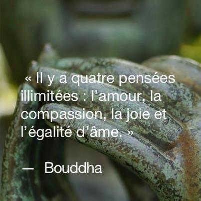 Populaire Les 25 meilleures idées de la catégorie Citation de bouddha sur  EU31