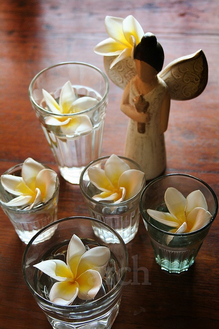 chamelis in chai glasses