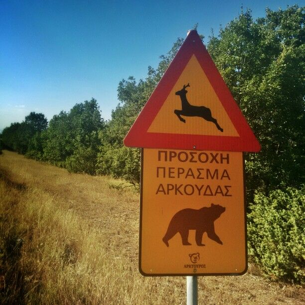 Grevena, Greece. Bear crossing sign.