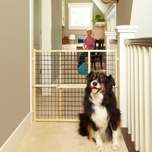 To keep your pup away from off-limits areas, set up the MyDog Extra-Wide Wire Mesh Dog Gate from North States. Specifically designed for wide openings, this extra-tall dog gate fits snugly in openings from 29.5 to 50 inches without any fussy hardware or setup. The sturdy hardwood frame features brown wire mesh panels so you can keep an eye on your dog even when they're behind the gate, and the side bumpers will protect your walls from marks.