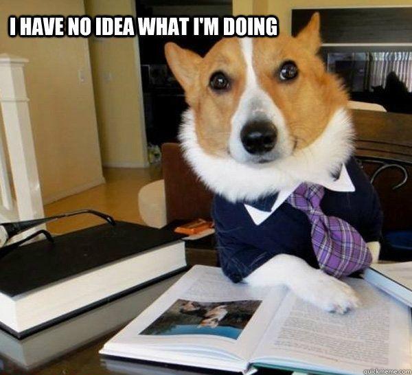 Image result for i have no idea dog meme