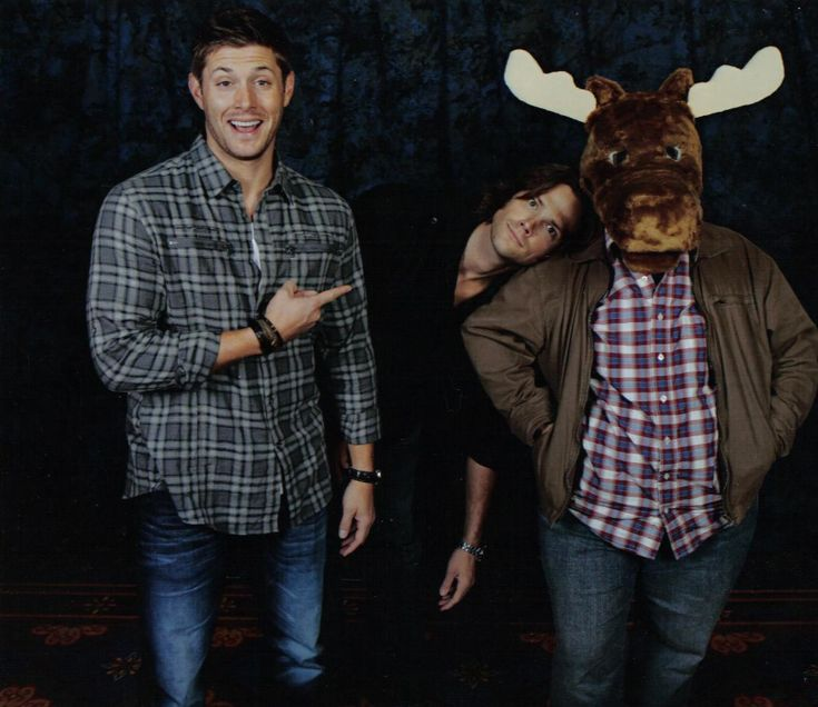 Hey look, two moose! #AndJensenBeingGlorious