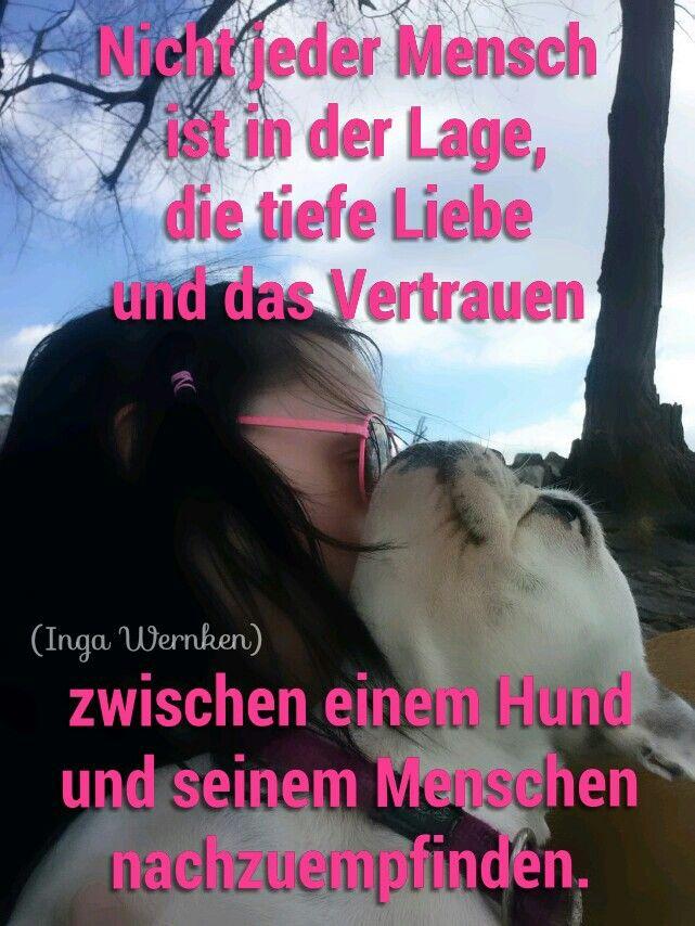 Nicht jeder Mensch  ist in der Lage, die tiefe Liebe  und das Vertrauen  zwischen einem Hund  und seinem Menschen  nachzuempfinden. Inga Wernken