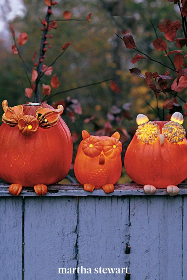 The Owls Extra Large Eyes Are Made From Halved Miniature Pumpkins And Gourds Their Feet And Ears Are Curved Pieces Of Pumpki