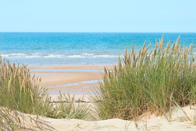 If you're fond of sand dunes and salty air Formby Beach is the palce for you #UKBeach #Liverpool #sunseasand