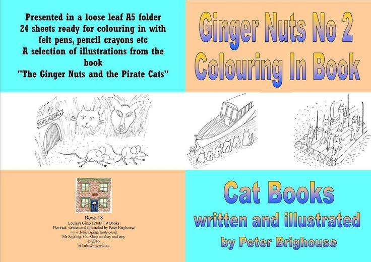Ginger Nuts Second Colouring In Book children's #cats @LulusGingerNuts
