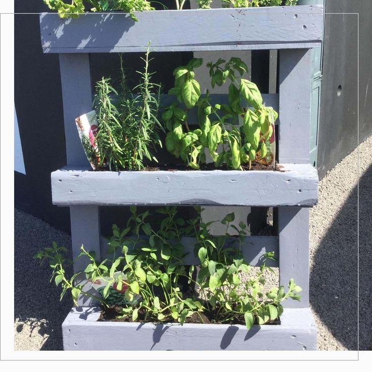 25 best ideas about palette de jardin d 39 herbes aromatiques sur pinterest calendrier de - Le petit jardin quilt pattern calais ...