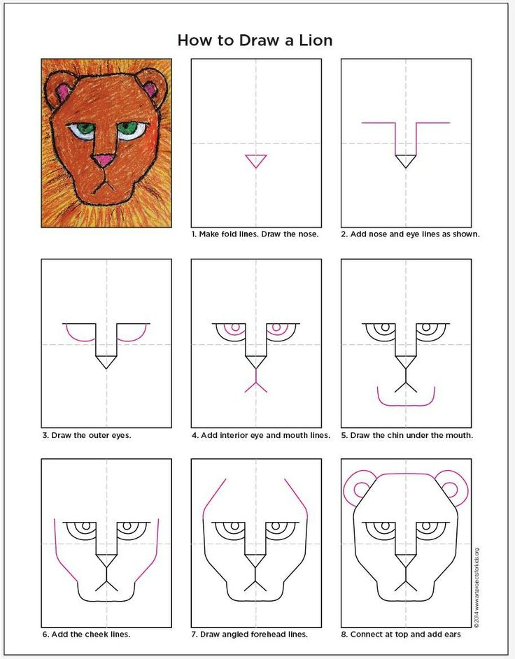 Shape drawing: geometry Lion