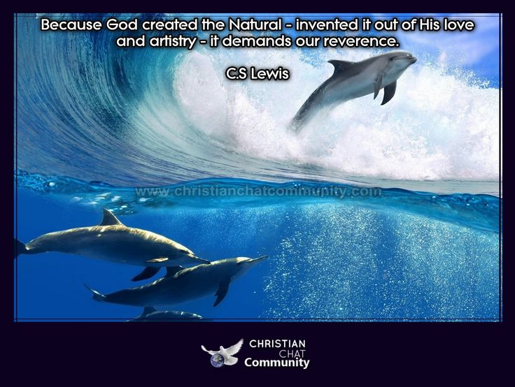 God Created The Natural - C.S Lewis - Christian Chat Community