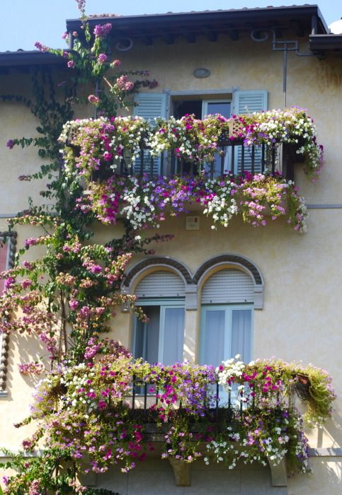 Top 20+ Spectacular Balcony Gardens That You Must See