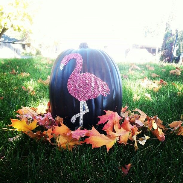 Flamingo pumpkin flamingos pinterest pumpkins and