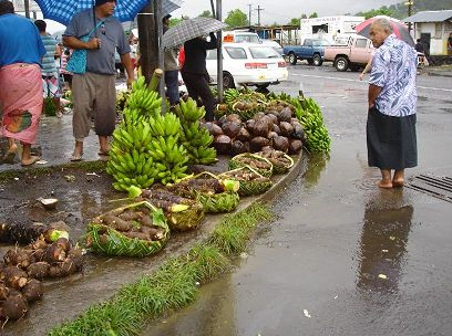 New sheltered market opens in Samoa.