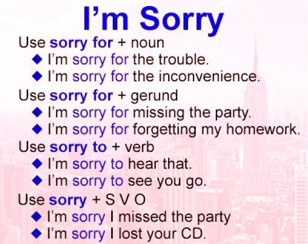 I'm sorry