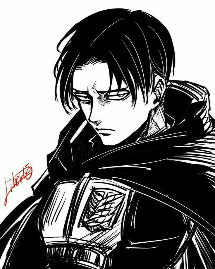 Леви Аккерман | АТАКА ТИТАНОВ | Attack on titan levi, Attack on