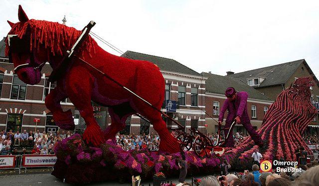Boer ploegt by Omroep Brabant | Flower Corso in Holland - Bloemencors ...