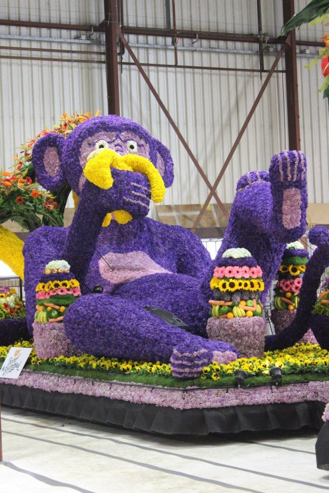#Flowerparade #bloemencorso #lisse #monkey shot by SLDphotography