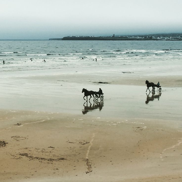 Surfers and horses at the beach -Lahinch, Ireland
