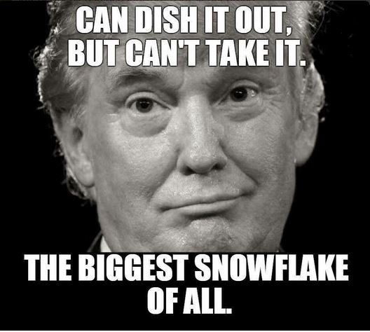 Trump can dish it out but can't take it. He's the biggest snowflake of all.