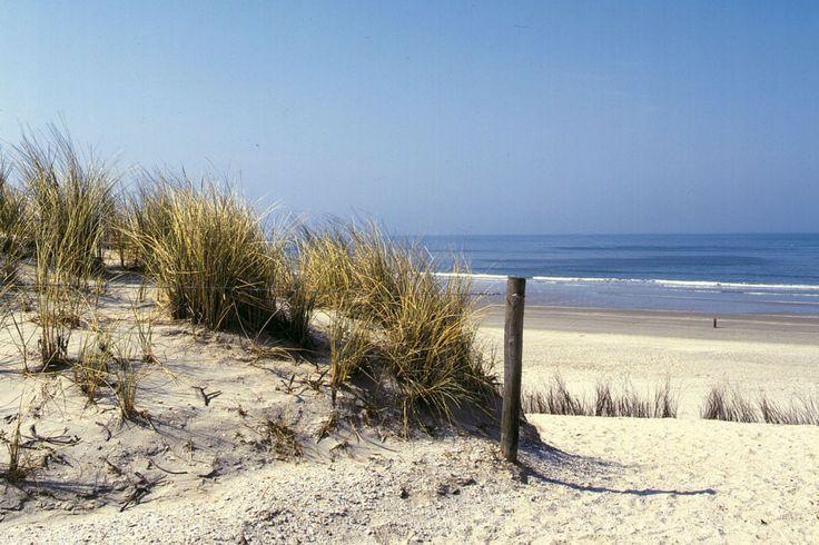 Herzlich willkommen beim Familiencamping de Duindoorn für ein Unvergesslicher Strandurlaub in IJmuiden / Nordsee Niederlande