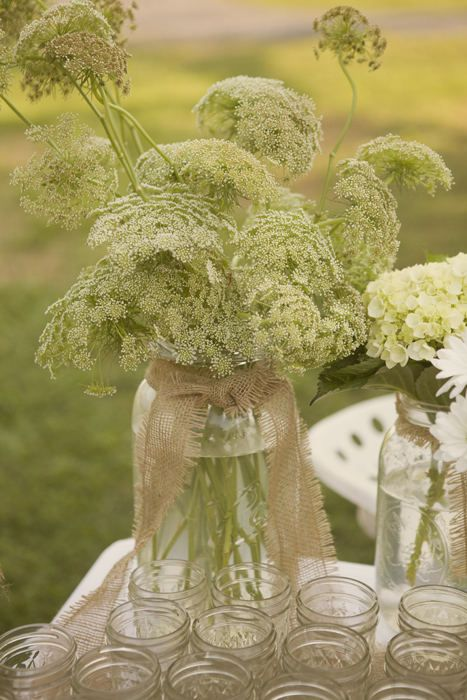 Queen Anne's Lace- blooms along country roads in the summer: Burlap, Lace Mason Jars, Floral Design, Wedding Flowers, Events Design, Anne S Lace, Queen Anne Lace, Design Blog, Queen Annes Lace