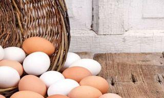Λύθηκε το μυστήριο: Να σε τι διαφέρουν τελικά τα λευκά από τα καφέ αυγά