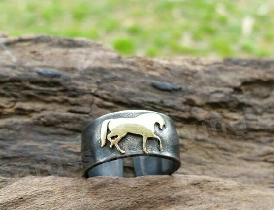Horse Ring, Metal Horse Ring, Brass Horse Band, Unisex Horse Ring, Horse Jewelry, Steel and Brass, Prancing Pony, Equestrian Jewelry, Shiny by BluegrassEngraving on Etsy