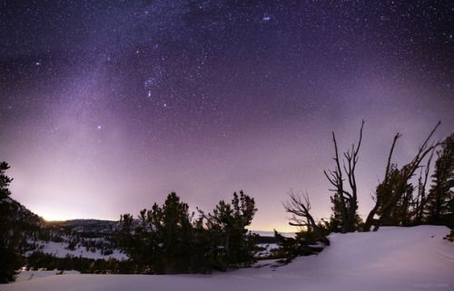 Winter Night Sky over The Mt Rose Sheep Flat meadow last night with Carson down to the left and Lake Tahoe peaking through the branches center-right One of the most technically challenging photos Ive ever taken   #landscape#winter#night#rose#sheep#flat#meadow#carson